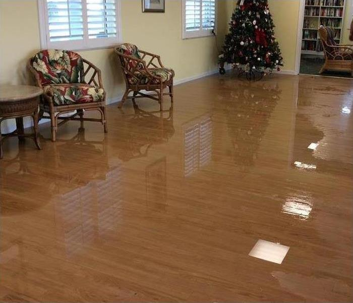 Water Damage 24 Hour Emergency Water Damage for Longboat Key