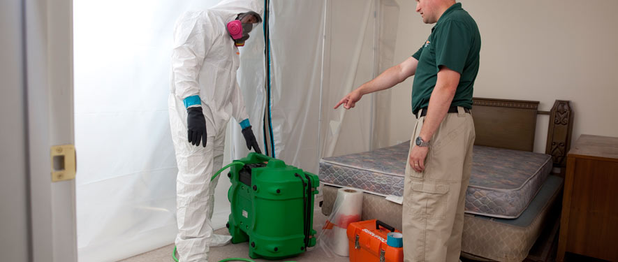 Bradenton, FL mold removal process